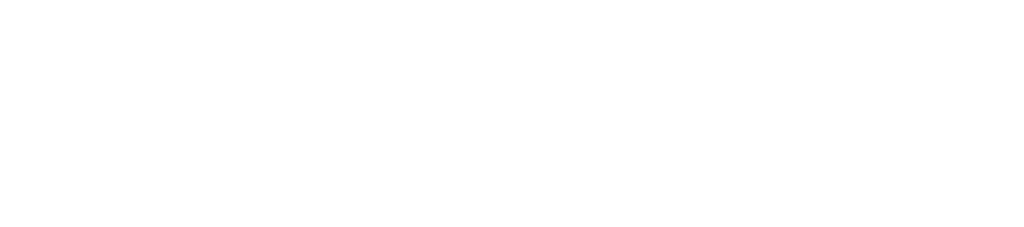 Parknav®
